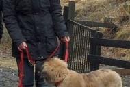 winterwanderungderbgam26-02-201214