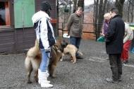 winterwanderungderbgam26-02-201218