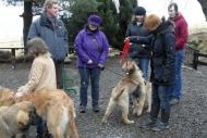 winterwanderungderbgam26-02-20126